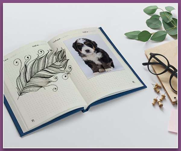 Everyday A5 Personalised Notebooks
